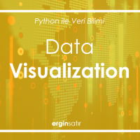 Data Visualization Denemelerim